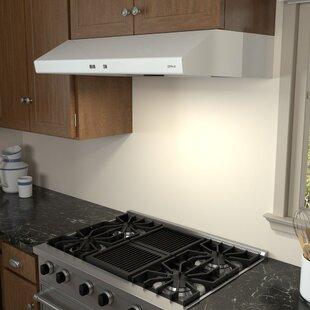 45 Inch Wide Cabinet | Wayfair