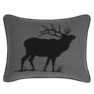 Outdoor Decorative Pillows Birch Lane