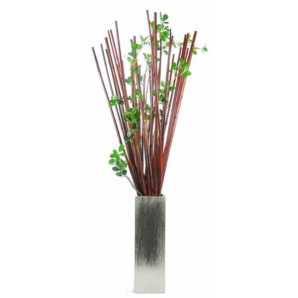 Creative Branch Natural Bambooficus Leaf Stem Plant In Decorative