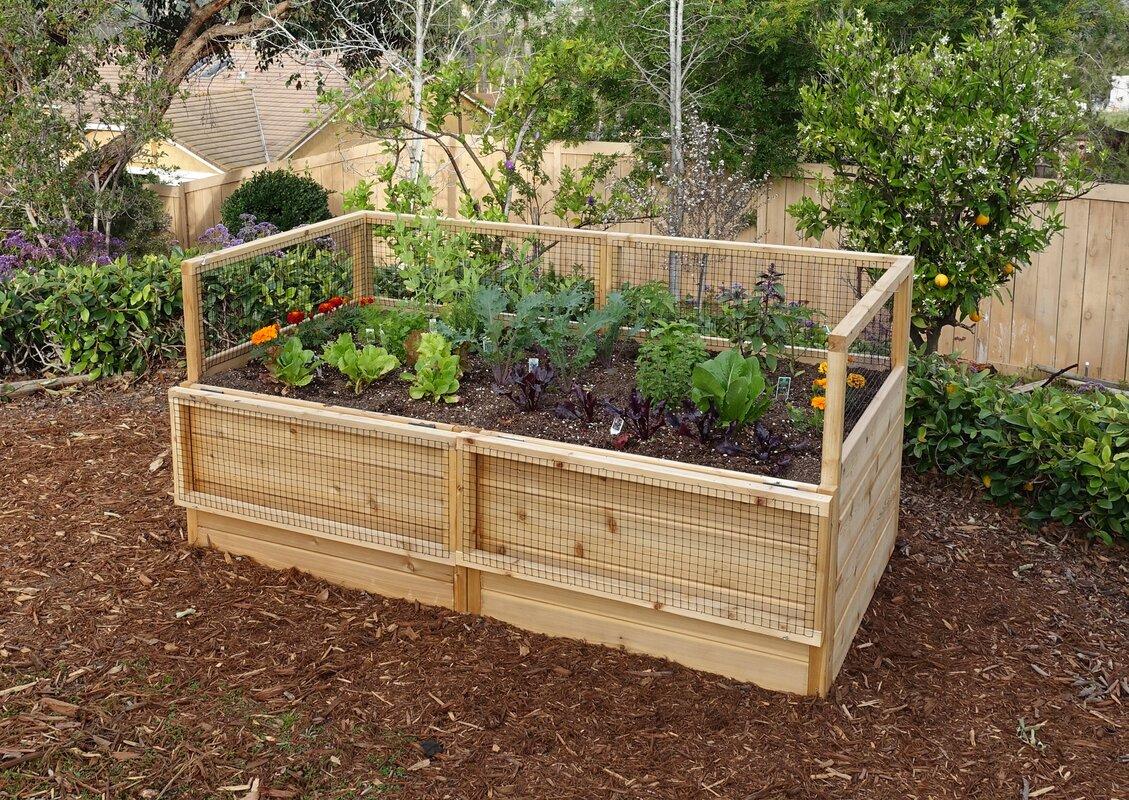 Cedar Raised Garden Beds Wayfair