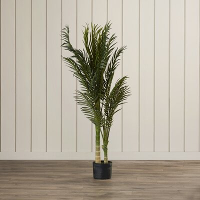 entracing palm tree type house plant. Golden Cane Palm Tree Floor Plant in Pot  by Beachcrest Home Nearly Natural Double Robellini Planter Reviews Wayfair