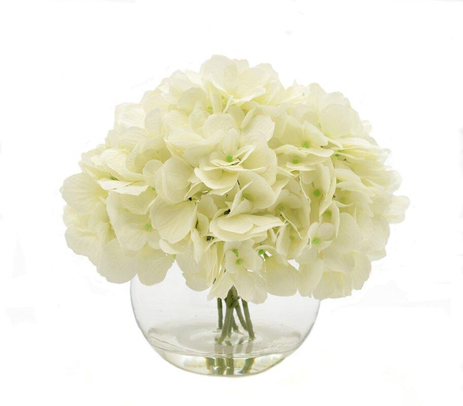 Beachcrest home white hydrangea floral arrangements reviews wayfair white hydrangea floral arrangements mightylinksfo