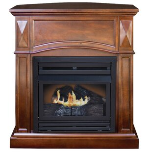 Propane Indoor Fireplaces You\'ll Love