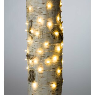 Firefly 10 Ft 60 Light Fairy String Set Of 6