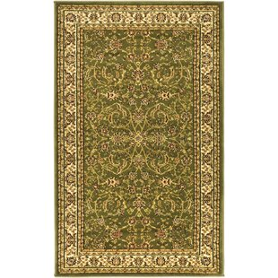Coupon Ottis Power Loomed  Sage/Ivory Area Rug By Charlton Home