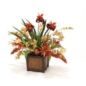 Tulips, Orchids, Irises in Planter