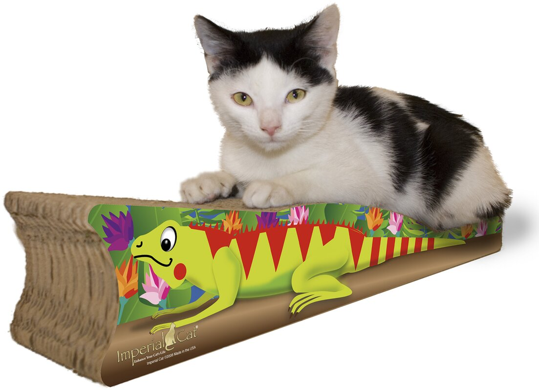 Scratch 'n Shapes Small Iguana Recycled Paper Scratching Board
