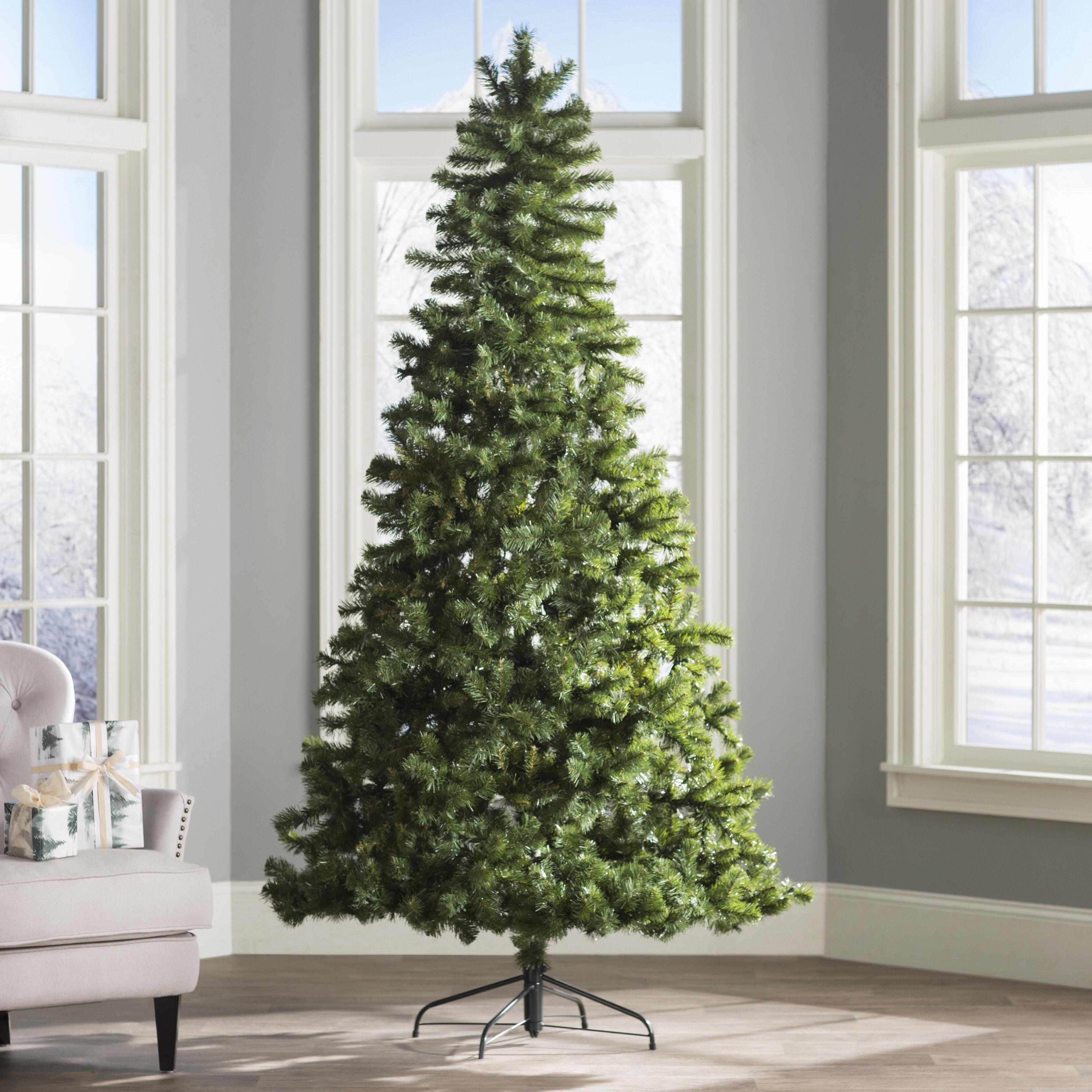 Wayfair Basics™ 7.5\' Green Fir Artificial Christmas Tree & Reviews ...