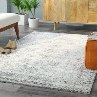 Brandt Machine Woven Grey White Area Rug