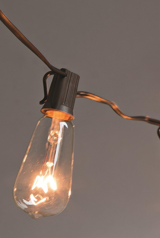 The Gerson Companies String Lighting & Reviews   Wayfair