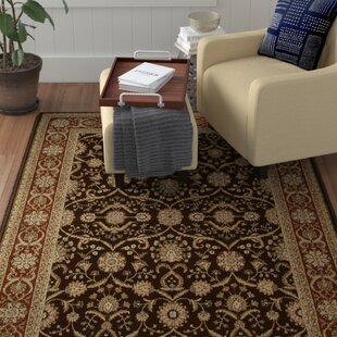 Bardy Brown Area Rug by Astoria Grand