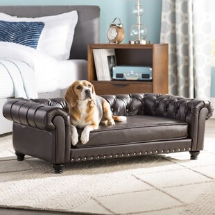 Xtra Large Dog Sofa | Wayfair