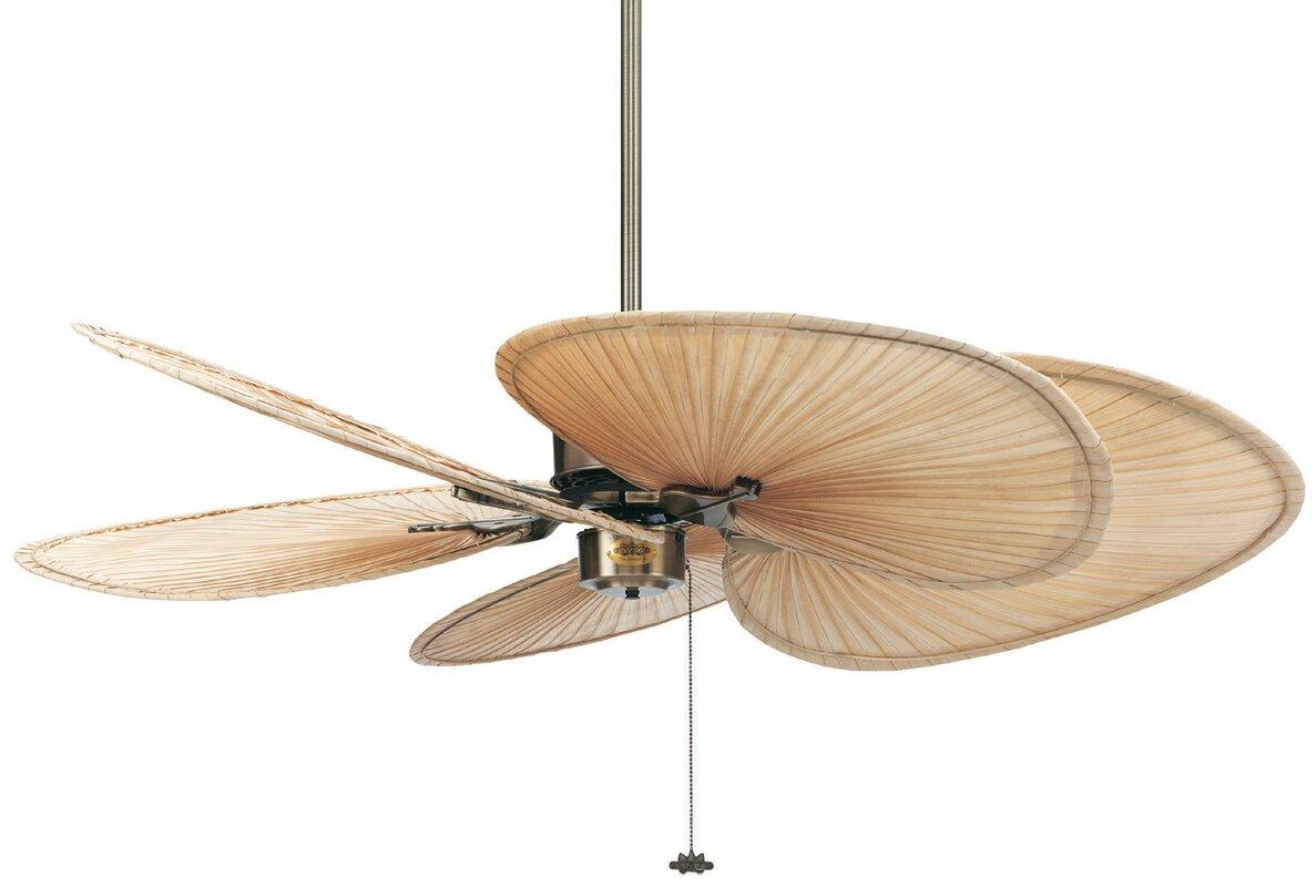 Fanimation 52 islander 5 palm blade ceiling fan reviews wayfair 52 islander 5 palm blade ceiling fan mozeypictures Choice Image