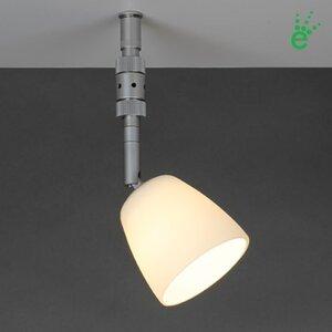 Pira 1 Light Mini LED Directional Track Head