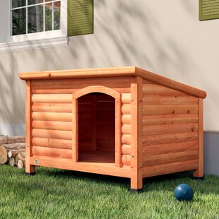 Dog Houses You'll | Wayfair on