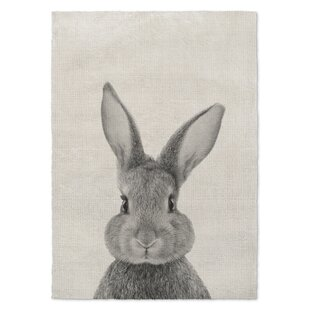 Rugs With Bunnies Wayfair