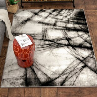 Arden Black/White Area Rug By Trent Austin Design