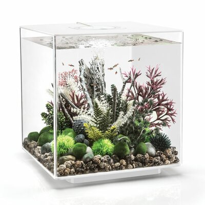 "Led Aquarium Tank Biorb Size: 17"" H X 15.7"" W X 15.7"" D, Color: White"