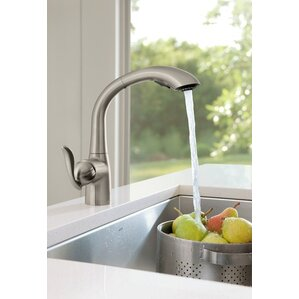 arbor single handle kitchen faucet with swivel spout
