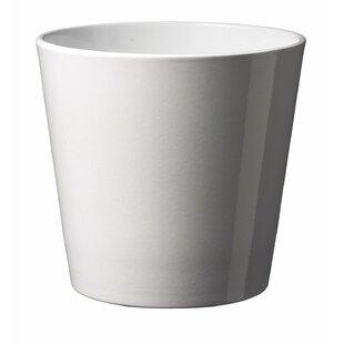 Ceramic Planters You Ll Love Wayfair