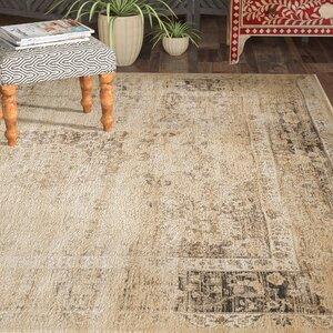 Vishnu Beige/Brown Area Rug