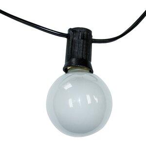 Ashantilly Light String