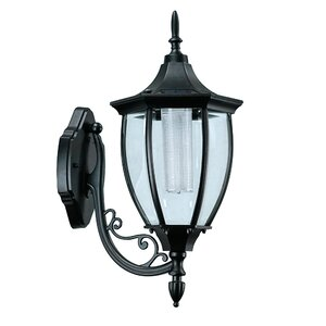Beech 1-Light Outdoor Wall Lantern