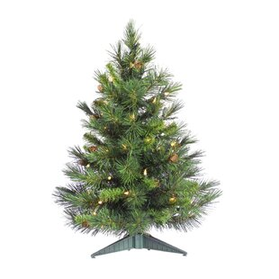 cheyenne 2 green artificial christmas tree with 50 clear lights