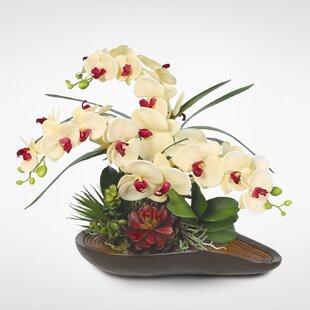 Genial Table Top Floral Arrangements | Wayfair