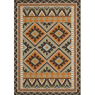 Lakewood Multi-Coloured Indoor/Outdoor Area Rug by Brick & Barrow