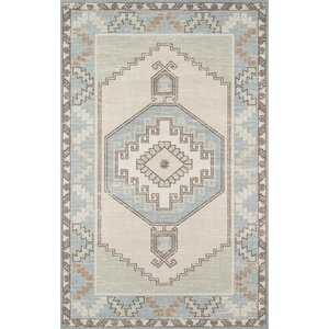 Moyer Indoor Light Blue Area Rug