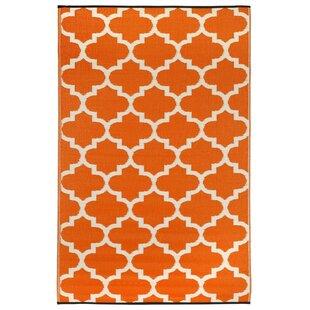 Tangier Orange Outdoor Rug by Latitude Vive