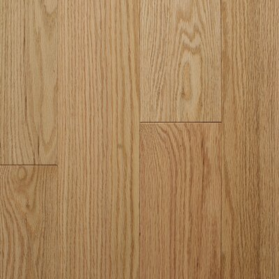 "Reykjavik 5"" Engineered Oak Hardwood Flooring Branton Flooring Collection Finish: Natural"