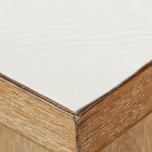 Wayfair Basics Cushioned Table Pad