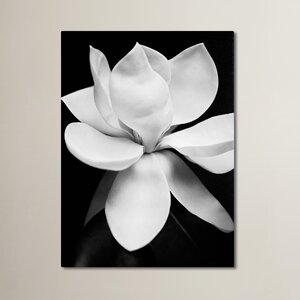 Magnolia Photographic Print on Wrapped Canvas