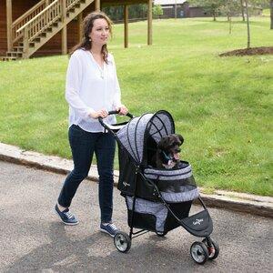 Regal Pet Stroller