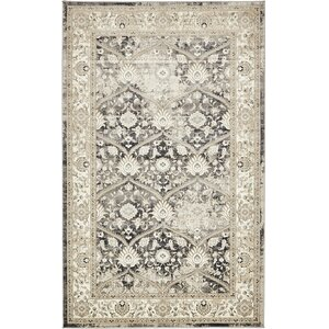 Alderson Dark Gray Area Rug