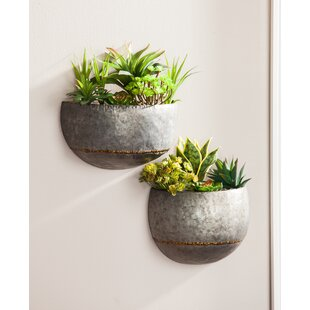 wall planters vertical gardens you 39 ll love. Black Bedroom Furniture Sets. Home Design Ideas
