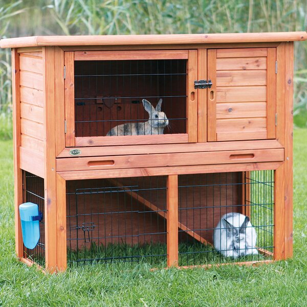 Rabbit Amp Bunny Cages You Ll Love Wayfair