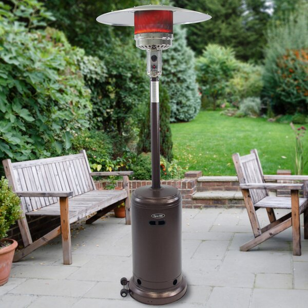 Dyna Glo Dyna Glo 41000 Btu Propane Patio Heater Reviews Wayfair