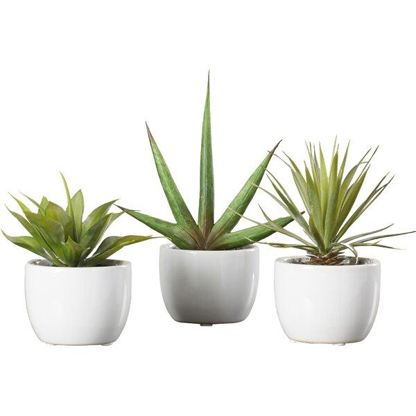 Modern Faux Plants Florals Allmodern