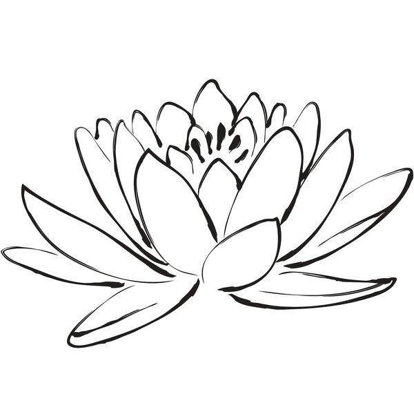 wallpops  digital lotus flower wall decal  u0026 reviews
