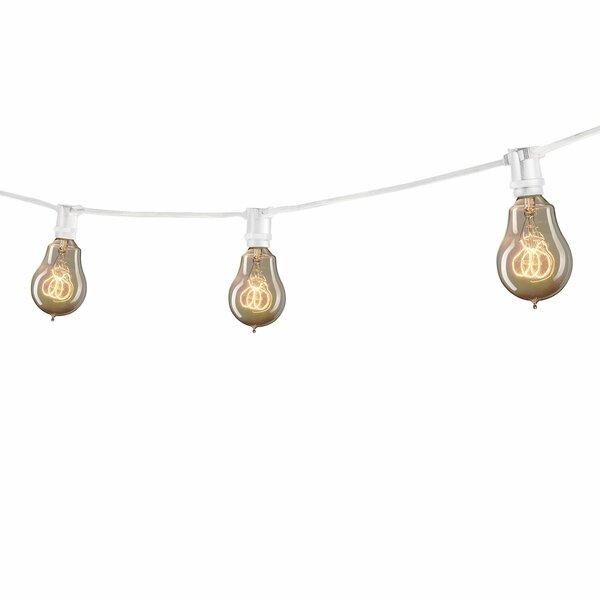 Globe String Lights & Reviews Birch Lane