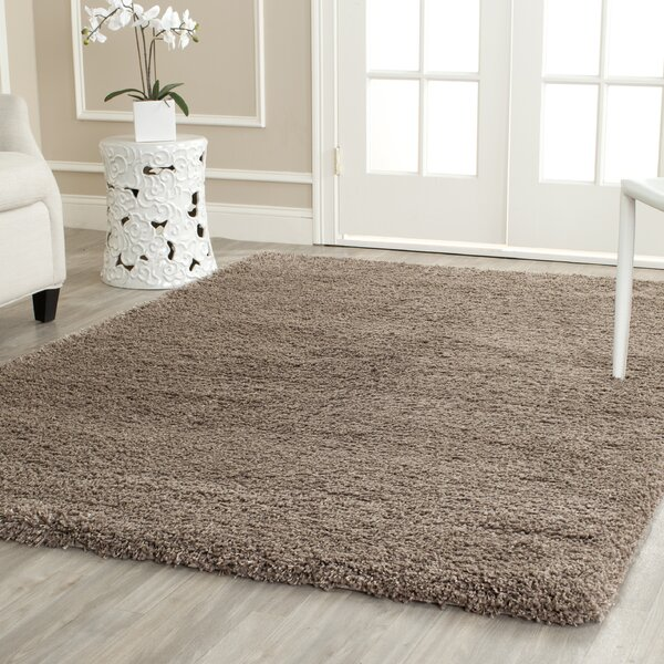 Thick Pile Area Rugs Youu0027ll Love Wayfair
