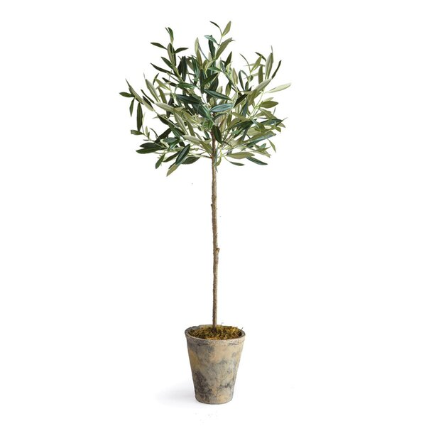 Faux olive tree in pot reviews joss main for Olive trees in pots winter care