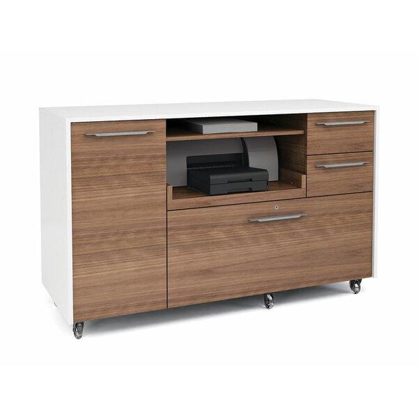 Format 2 drawer mobile credenza reviews allmodern - Mobile credenza ...
