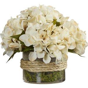 hydrangea in rope glass vase
