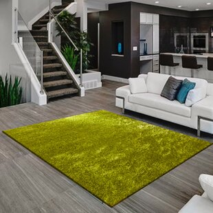 Bay Isle Home Josephine Lime Green Area Rug | Wayfair