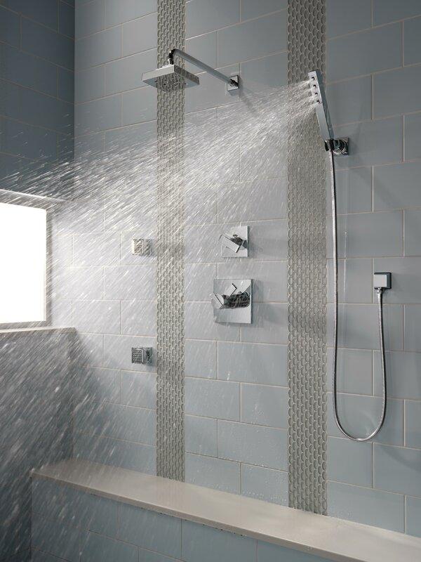 Delta 2 GPM Body Spray & Reviews | Wayfair