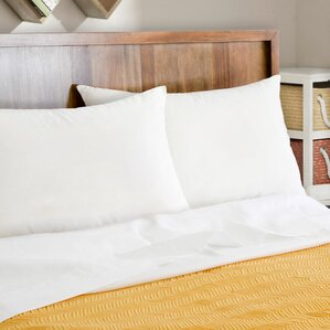 Natural Plus Wick Away Talalay Latex and Polyfill Queen Pillow (Set of 2) by Alwyn Home